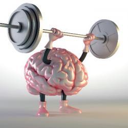 AVS du 17-02-2020 : Les talents cachés de votre cerveau au travail  - Emmanuelle Joseph-Dailly