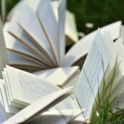 Book Club du 27-09-2020 : La Part du Sarrasin - Magyd Cherfi