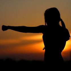 AVS du 11-11-2020 : Le bon mindset, une question de réglage -...