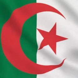Les Grands Témoins du 20-06-2021 : Algérie, la sortie de crise